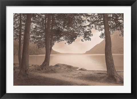 Framed By the Lake Print