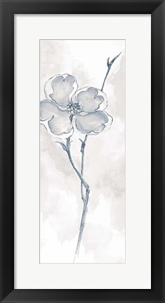 Framed Solitary Dogwood II Gray Print