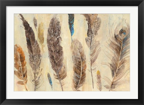 Framed Feather Study Print