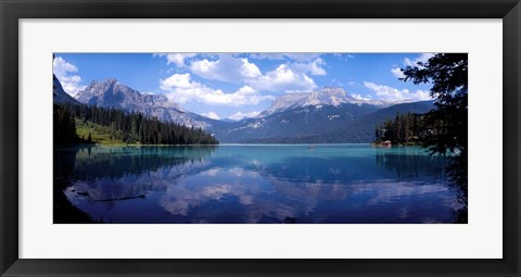 Framed Emerald Lake Reflections, Alberta, Canada Print