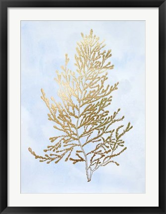 Framed Gold Foil Algae IV on Blue - Metallic Foil Print
