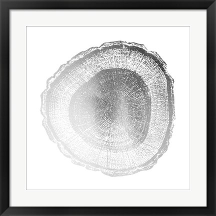 Framed Silver Foil Tree Ring I - Metallic Foil Print