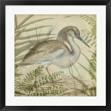 Framed Heron & Ferns II Print