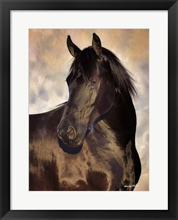 Framed TBD (black horse) Print