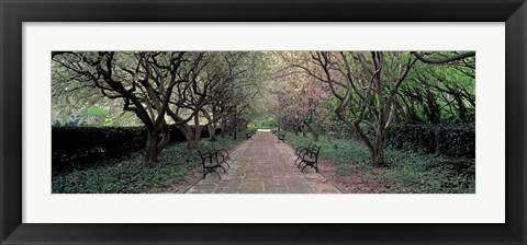 Framed Through Conservatory Garden, Central Park, NYC Print