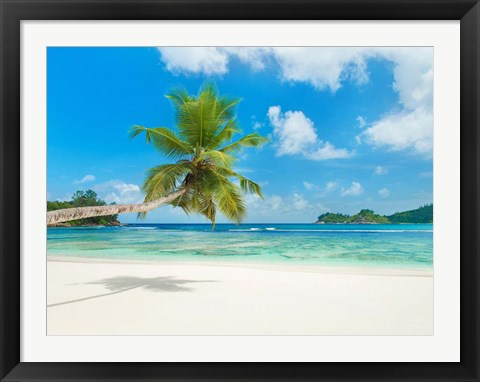 Framed Tropical beach, Seychelles (detail) Print