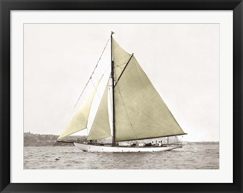 Framed Yacht on Sydney Harbour Print