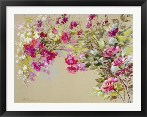 Framed Garden of the Rose II Print
