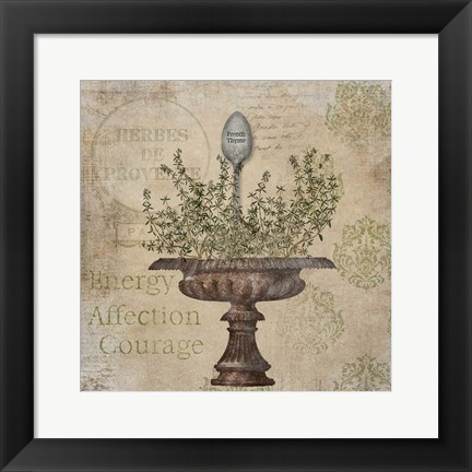 Framed French Thyme Print