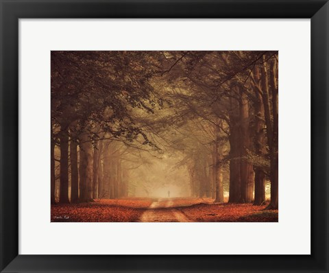 Framed Misty Walk Print