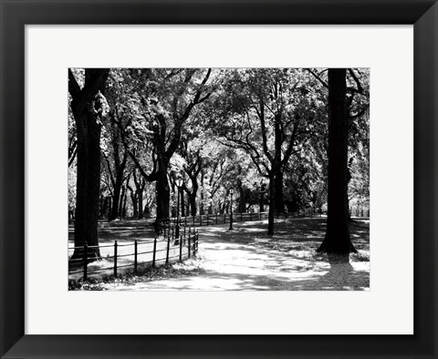 Framed Central Park Walk Print
