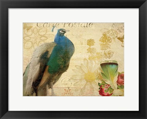 Framed Postcard Peacock Print