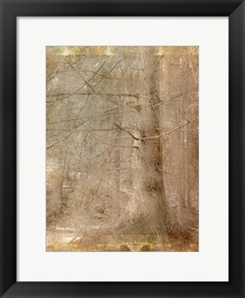 Framed In the Forest Print