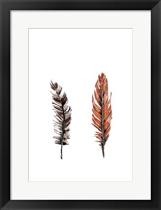 Framed Traditional Sketched Feathers Print