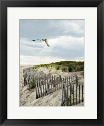 Framed Dawning Seagull and Godbeams Print