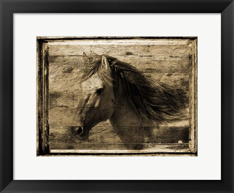 Framed Noble Steed Print