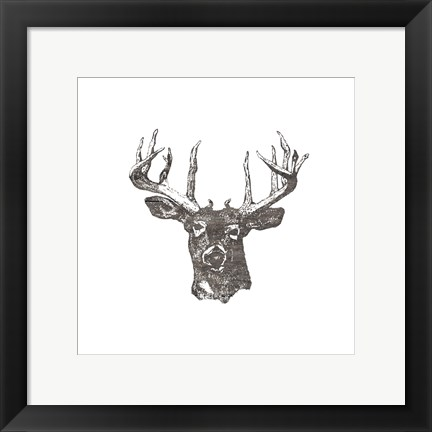 Framed Big Buck Print