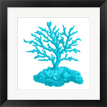 Framed Blue Coral 4 Print