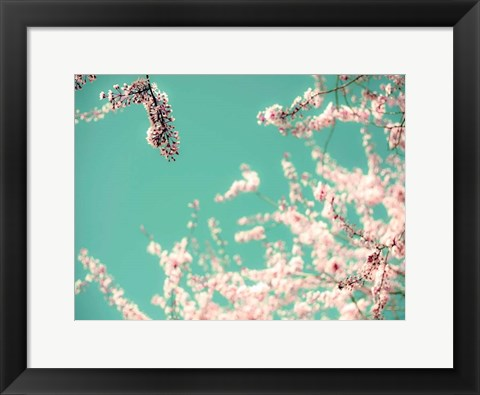 Framed Apple Sky Print
