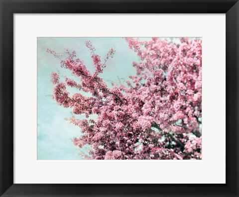 Framed Blossoming Spring Print