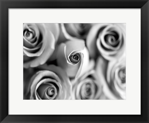 Framed Monotone Bouquet Print