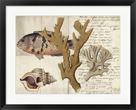 Framed Sealife Journal I Print