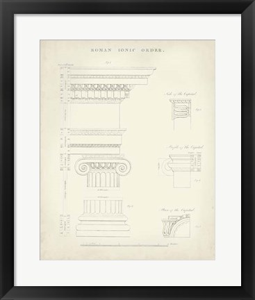Framed Greek & Roman Architecture V Print