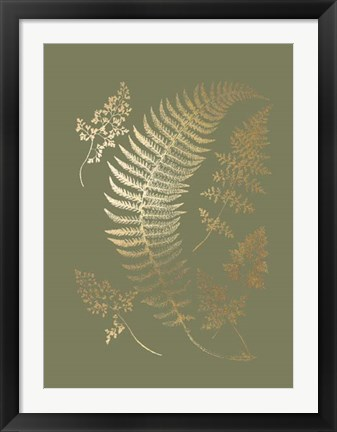 Framed Gold Foil Ferns IV on Mid Green - Metallic Foil Print