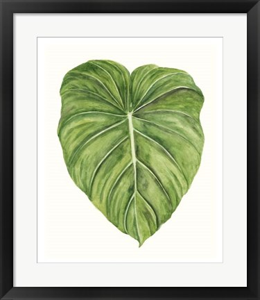Framed Tropical Breeze Leaves II Print