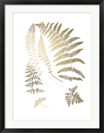 Framed Gold Foil Ferns II - Metallic Foil Print