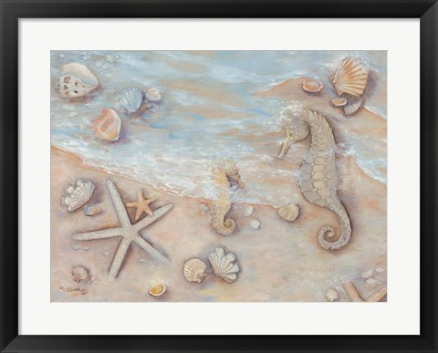 Framed Gifts of the Sea II Print
