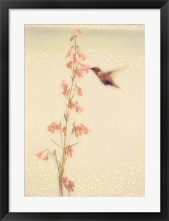 Framed Enchanted Hummingbird Print