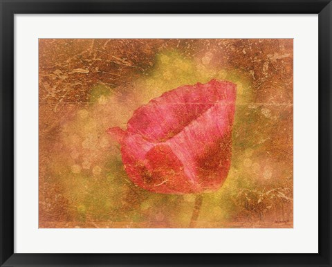 Framed Aura of a Poppy Print