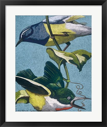 Framed Colorful Birds on Vine Print