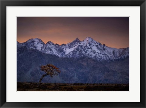 Framed Tree and the Mountain Print