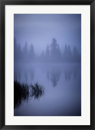 Framed Foggy Reflection Print