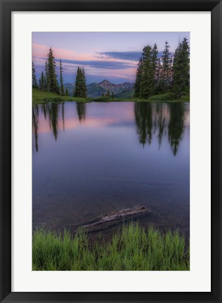Framed Evergreen Reflections Print