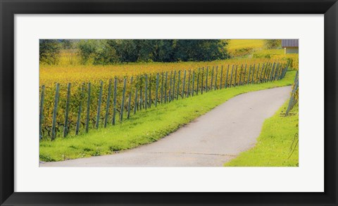 Framed Road along Fields Print