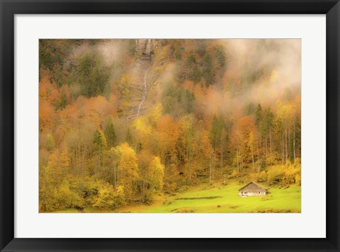 Framed Fall Colors Print