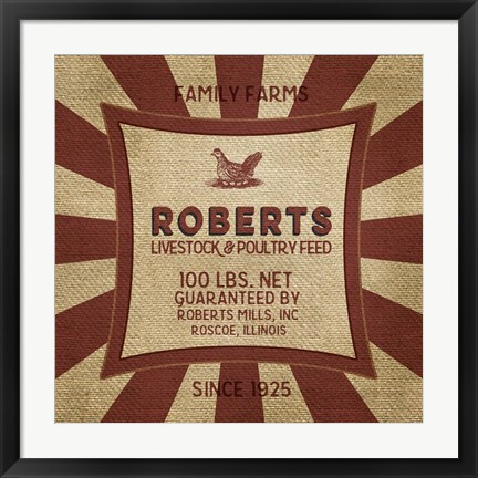 Framed Roberts Starburst Feed Sack Print