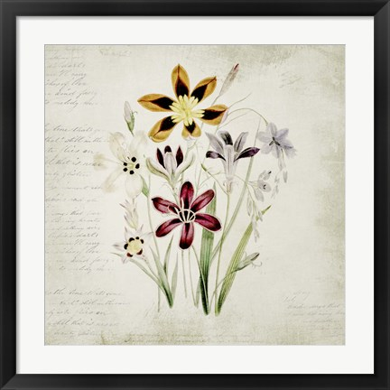 Framed Wild Flowers One Print
