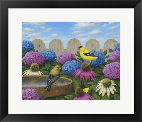 Framed Goldfinches Print