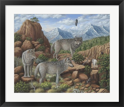 Framed Scouting the Horizon - Grey Wolves Print