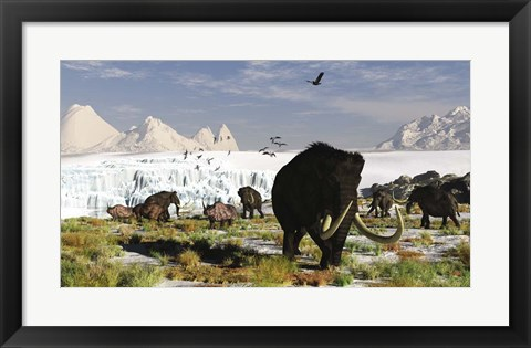 Framed Woolly Mammoths and Woolly Rhinos in a Prehistoric Landscape Print
