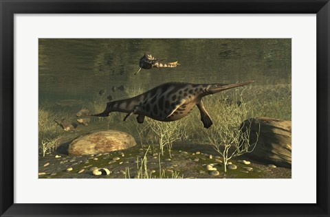 Framed Hupehsuchus Marine Reptiles Swimming In Triassic Waters Print
