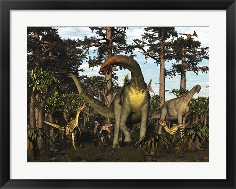 Framed Jobaria Dinosaur Is Menaced By Afrovenators In Jurassic North Africa Print