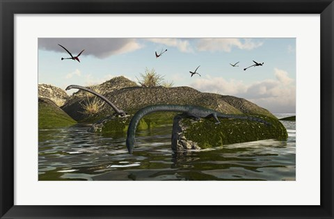 Framed Tanystropheus Fishes From The Rocks Print