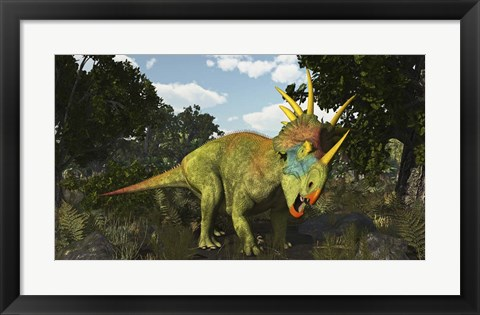 Framed Styracosaurus, A Horned Dinosaur Of The Late Cretaceous Print