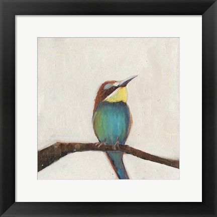 Framed Bird Profile II Print