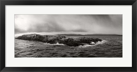 Framed Island of arctic birds and sea lions, Beagle Channel, Patagonia, Argentina Print